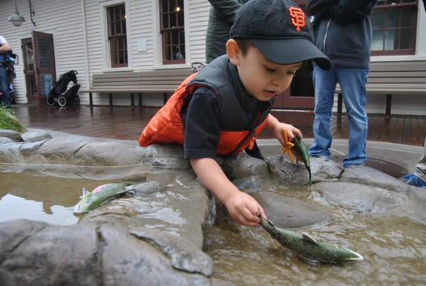 Bay_Area_Discovery_Museum_0527
