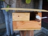 birdhouse-front-new