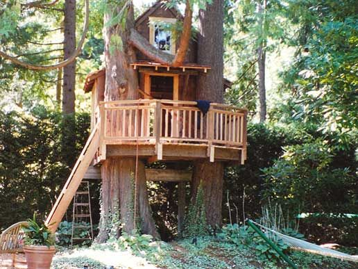 50 kids treehouse designs for Treehouse designers