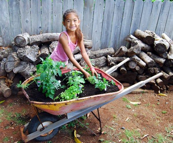 . Plant an Herb Garden with a Reclaimed Wheelbarrow