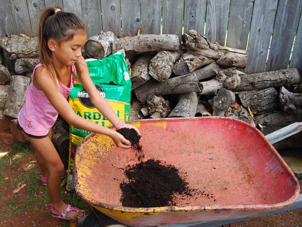 herb-garden-soil