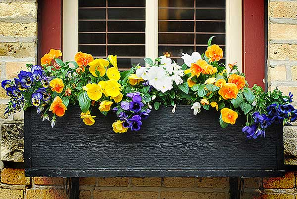 flower-box-mothers-day-gift