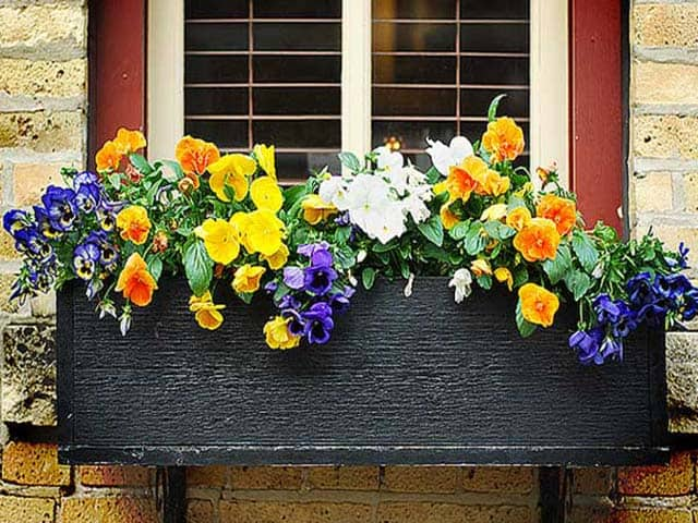 Handmade Flower Boxes Brighten any Window