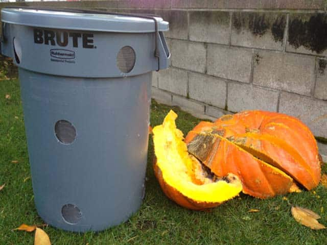 How To Build a Compost Bin For Rotting Pumpkins