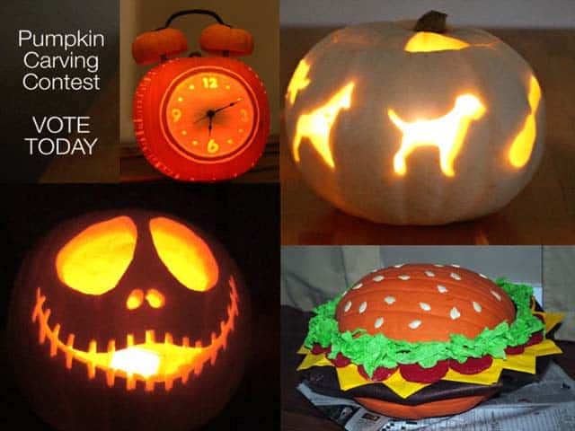Pumpkin Carving Contest Finalists