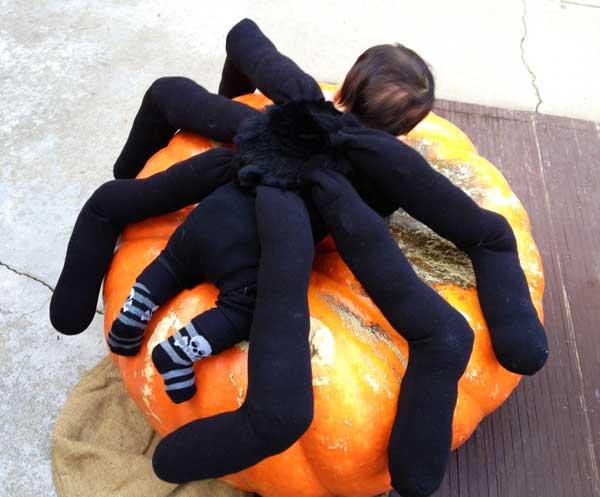 Spider-Pumpkin