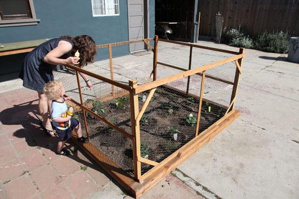checking-garden