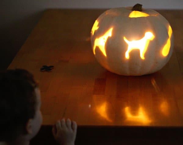 cookie-cutter-pumpkin