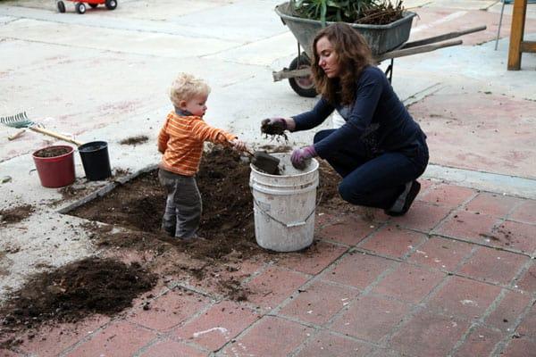 digging-plants