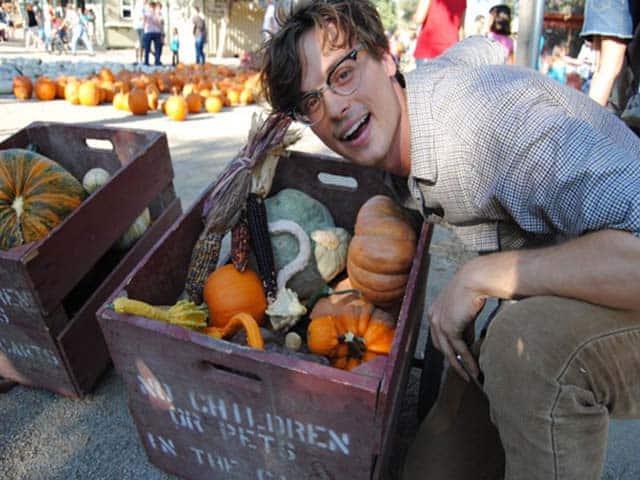 Uncle Matthew's Pumpkin Picking Tips