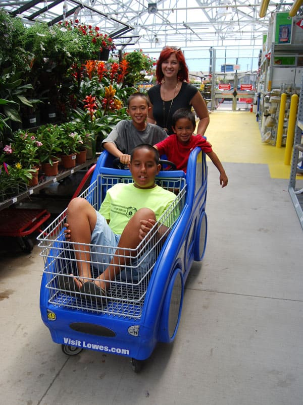 laura-lowes-cart