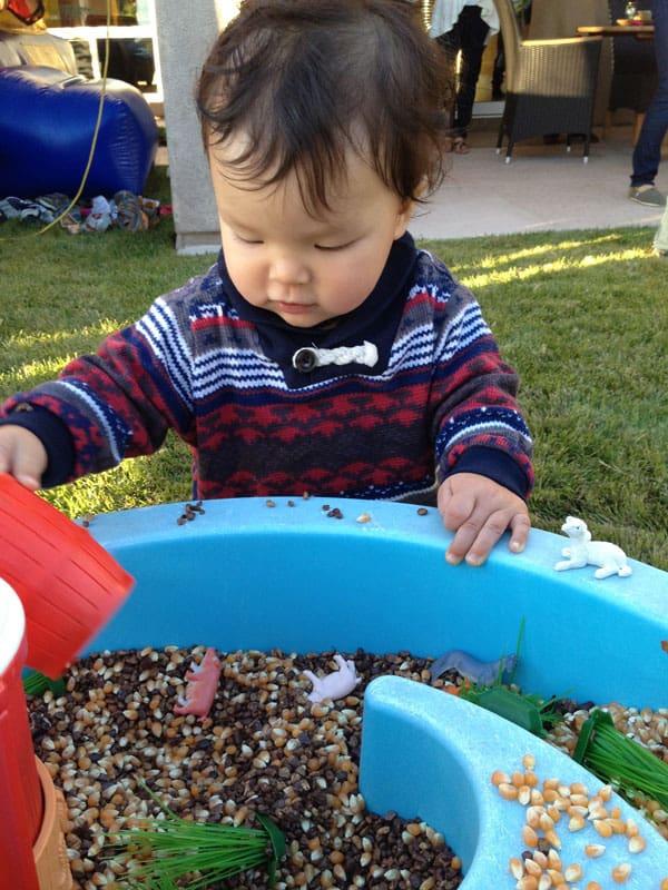sensory-board-corn-seeds