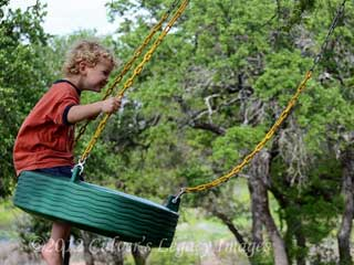 tire-swing-large