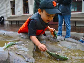 Join the Fun at the Bay Area Discovery Museum