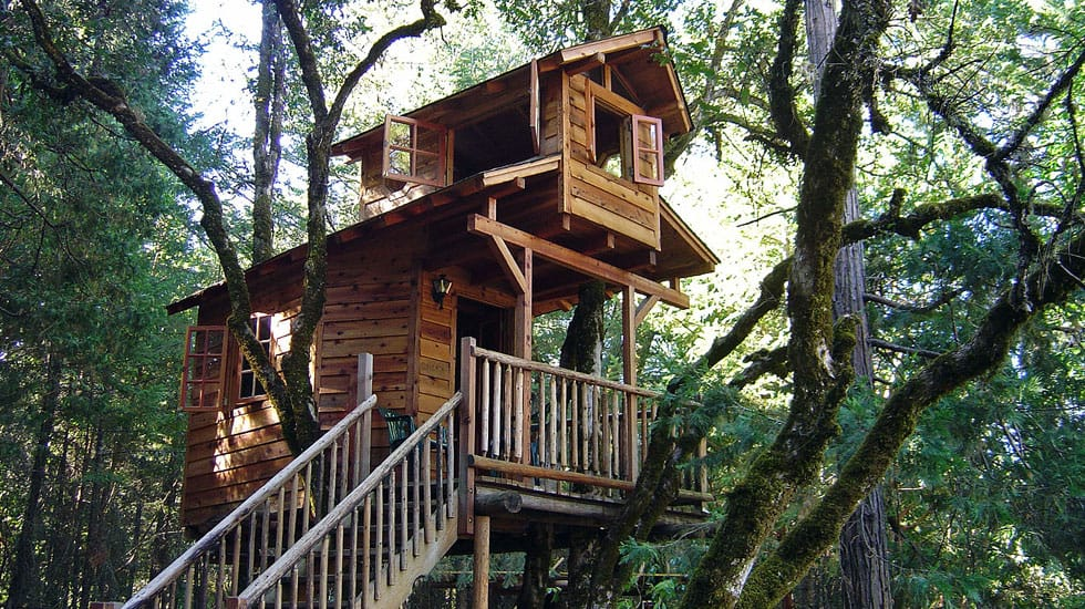 50 kids treehouse designs for Building a house in idaho