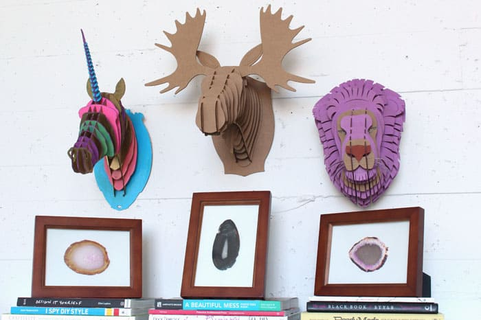 Animal-Busts---Group
