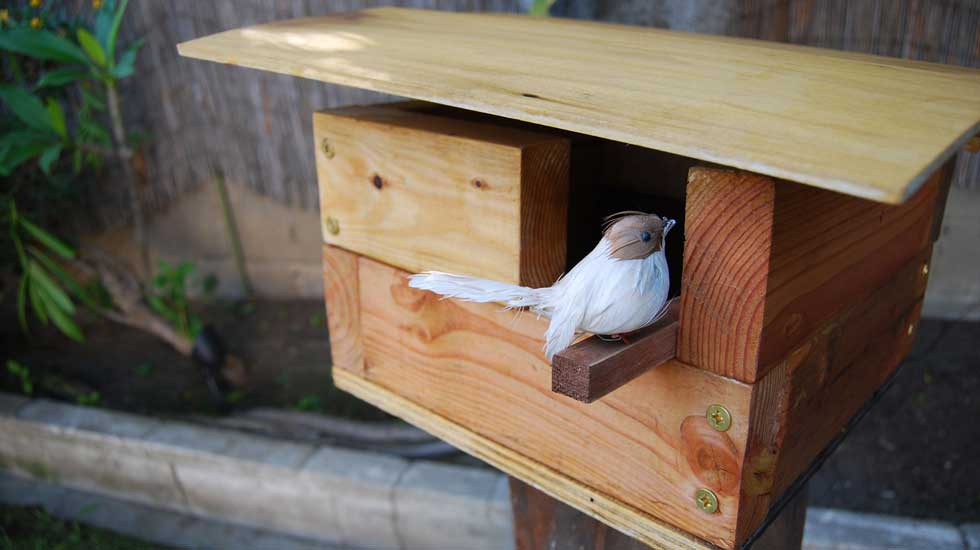 How to build a modern birdhouse for Build your own modern home